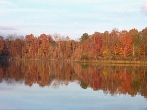still-waters-autumn